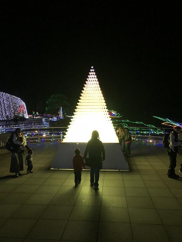 まんのう公園 シャンパングラスタワー